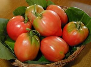 pomodori.cesto